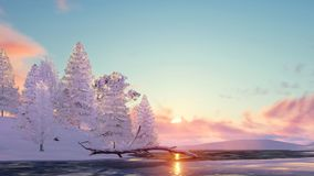 Snowy fir trees and frozen lake at sunset. Winter landscape with snowy fir trees among snowdrifts on shore of frozen lake at sunset or sunrise. 3D illustration Royalty Free Stock Photos