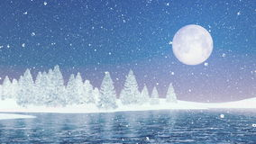 Snowy firs and frozen lake under big full moon stock video footage