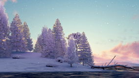 Snowy firs and frozen river at scenic sunset 4K. Winter landscape with snowy fir tree forest on shore of frozen river and slight snowfall at scenic sunset or stock video