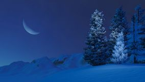 Snowy firs on mountain top at moonlight night. Dreamlike winter scenery with snow-covered spruces on a mountain top at magical night with a big half moon in the Royalty Free Stock Images