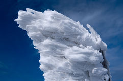 Snowy flag. Snow and wind make some very interesting figures stock images