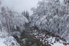 Snowy-Fluss-Landschaft lizenzfreie stockbilder