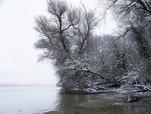 Snowy-Flussufer von Duna-Fluss Ungarn Lizenzfreies Stockfoto