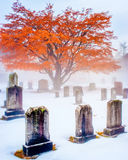 Snowy and Foggy Cemetery Stock Photography