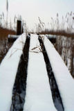 Snowy footbridge near to pond in January. Royalty Free Stock Photo