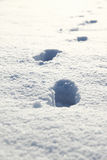 Snowy Footprints Royalty Free Stock Photo