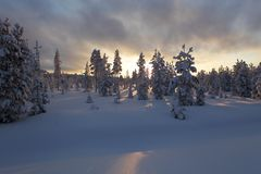Snowy forest with clouds and sun in Finland royalty free stock photos