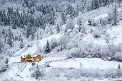 Snowy forest with house on mountain slope Stock Images