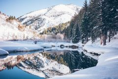 Snowy Forest With Lake Near Mountains during Daytime Stock Photo