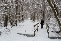 Snowy forest with a person an a small wooden bridge Royalty Free Stock Photo