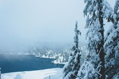 Snow Lake, Washington. Snowy forest of pines around Snow Lake in Washington, USA royalty free stock image