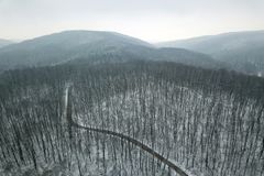 Snowy forest with a road. Aerial view. Winter Forest Aerial Royalty Free Stock Photo