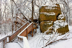 Snowy Forest Scenery Illinois. Boardwalk through a snow covered forest of northern Illinois Stock Image