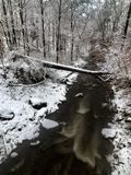 Snowy forest stream Stock Photography