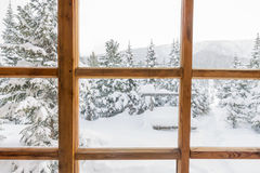 Snowy forest trees in the snow outside the window with a wooden. Frame royalty free stock image