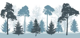Snowy forest in winter, silhouette of trees pines, spruces, oak, etc.. Vector illustration.  stock illustration