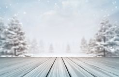 Snowy forest with wooden deck at daylight royalty free stock photo