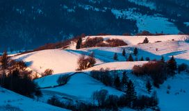 Snowy forested hills in morning light. Beautiful nature scenery in winter Stock Photography