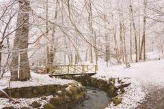 Snowy-Fußbrücke Stockbild