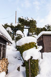 Snowy garden. Winter holidays in the Czech Republic Royalty Free Stock Image