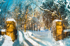 Snowy Gated Driveway. Gated driveway in golden light after snowfall Royalty Free Stock Image