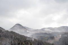 Snowy-Gebirgs-Wälder von Nord-Kyushu Stockfotos