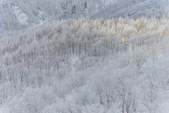 Snowy-Gebirgslandschaft, Japan Lizenzfreies Stockfoto