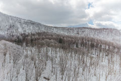 Snowy-Gebirgslandschaft, Japan stockfoto
