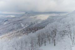 Snowy-Gebirgslandschaft, Japan Lizenzfreies Stockbild