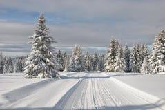 Snowy-Gebirgsstraße Lizenzfreie Stockfotografie