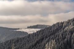 Snowy-Gebirgswald auf den Hügeln Lizenzfreie Stockfotos