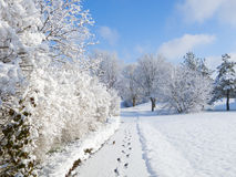 Snowy-Gehweg Stockfoto