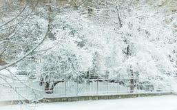 Snowy-Geschichte Stockbild