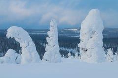 Snowy-Gipfel in finnischem Lappland Stockfotografie