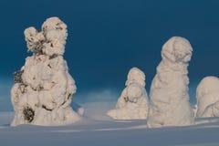 Snowy-Gipfel in finnischem Lappland Lizenzfreie Stockbilder