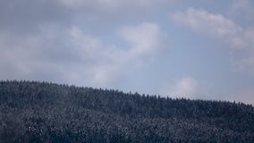 Snowy gray clouds form over forest in mountains. Time lapse stock video footage