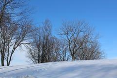 Snowy-Hügel-Ackerland im Südwesten Iowa lizenzfreie stockfotografie