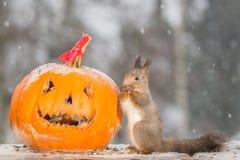 Snowy Halloween Stockbild
