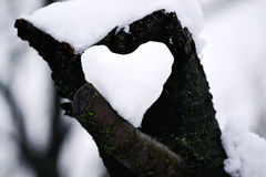 Snowy heart Royalty Free Stock Photos