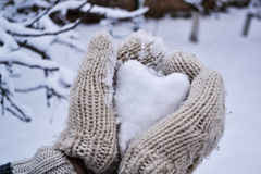 Snowy heart in woolen glove Stock Photo