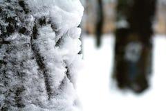 Snowy-Herz lizenzfreies stockbild