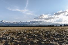 Snowy mountains in the steppe. Snowy high mountains in the steppe of the Altai Republic royalty free stock photography