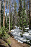 Snowy hiking path in Colorado Stock Photo