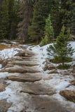 Snowy hiking trail stock photo
