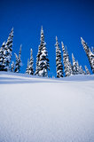 Snowy hill. In the winter in Alberta canada, ski hill with blue sky Royalty Free Stock Photography