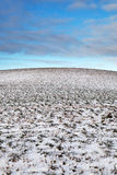 Snowy hill. Royalty Free Stock Image
