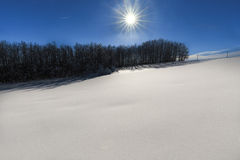 Snowy hill in sunlight Royalty Free Stock Photography