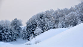 Snowy hills Stock Image