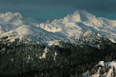 Snowy hills. Snowy hillls in slovenia alps velika planina with pines and cottages Royalty Free Stock Photography