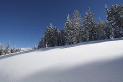 Snowy Hills Colorado Royalty Free Stock Photo